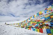 tibet: tibetan prayer flags