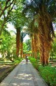 Senior Tourist in Aswan Botanischer Garten, kitchener's Island, Ägypten