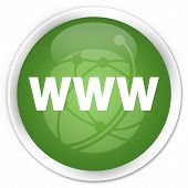 WWW Icon Green Button
