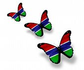 Three Republic Of The Gambia Flag Butterflies, Isolated On White