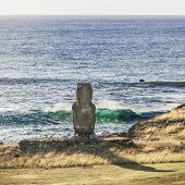 Lonely Moai In The Sea Bank