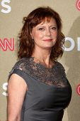 LOS ANGELES - DEC 2:  Susan Sarandon arrives to the 2012 CNN Heroes Awards at Shrine Auditorium on D