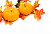 stock photo of fall leaves  - Fall leaves with orange gourd on white background fall border - JPG