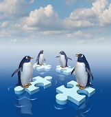 pic of merge  - Coming together with common purpose to assemble a team partnership to form a strong group with four penguins merging floating chunks of ice in the shape of puzzle pieces as insurance - JPG