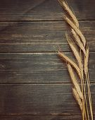 stock photo of fall-wheat  - Textured rustic old vintage wheat frame background - JPG
