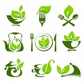 Organic food design elements