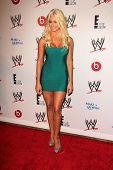 LOS ANGELES - AUG 15:  Maryse Ouellet at the Superstars for Hope honoring Make-A-Wish at the Beverly