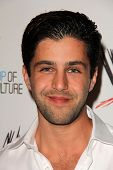 LOS ANGELES - AUG 15:  Josh Peck at the Superstars for Hope honoring Make-A-Wish at the Beverly Hill