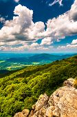 image of virginia  - View of the Shenandoah Valley from cliffs on South Marshall in Shenandoah National Park Virginia - JPG