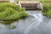 Processed and cleaned sewage flowing out from water reclamation facility to a river