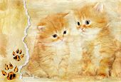vintage background with paper border and kittens picture