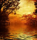 mysterious golden lake