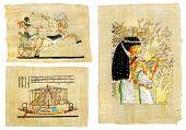 egyptian papyrus set