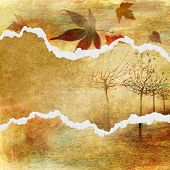 artistic autumn background with torn borders and p[lace for text