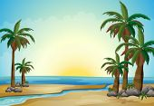 Illustration of the palm trees at the beach