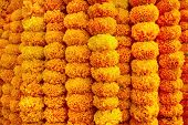 Marigold flowers garland background