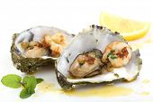 fried oysters and prawns in a shell isolated on white