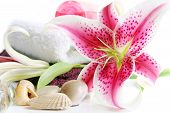 picture of stargazer-lilies  - Spa scene with towels seashells and beautiful pink Stargazer Lily - JPG