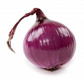 Fresh Violet Onion Isolated On White Background