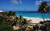 Bajan Tropical Beach
