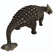 stock photo of ankylosaurus  - A huge armored dinosaur Ankylosaurus was a herbivore from the Cretaceous Era - JPG