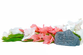 stock photo of gladiola  - White and peach gladiolas on white background with inspirational message chiseled on a rock - JPG