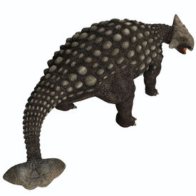 picture of ankylosaurus  - A huge armored dinosaur Ankylosaurus was a herbivore from the Cretaceous Era - JPG