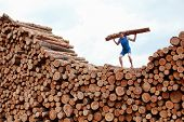 man on top of large pile of logs, lifting heavy log - training