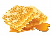 Honeycomb