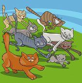 Running Cats Cartoon Illustration