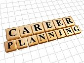 Career Planning In Golden Cubes