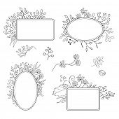 Abstract floral frames, vector, black on white