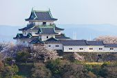 Wakayama Castle in Japan