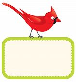 image of cardinal  - Vector illustration of a red Cardinal perched on a sign - JPG