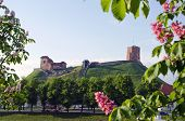Vilnius Symbol - Historical Castle And Tower Of Gediminas In Spring, Lithuania