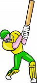 image of cricket bat  - Illustration of a cricket player batsman with bat batting done in cartoon style on isolated background - JPG