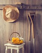 Rustic country shed interior with freshly picked yellow roses in basket