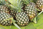 Fresh Pineapple Fruit On The Market.