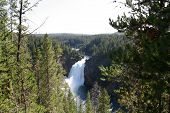 stock photo of undine  - Upper Waterfall in Yellowstone National Park - JPG