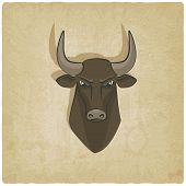 bull head old background