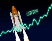 Cotton Stock Market