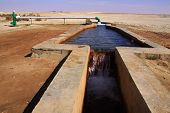 Spring Of Water In Desert,egypt