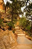 Cliff Palace Stairs