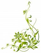 Green Vines And Flower