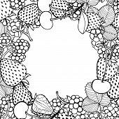 frame of berries