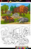 Mammals Animals Cartoon Coloring Book