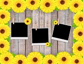 Empty Instant Photos And Sunflowers