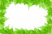 Leaves Frame