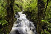Waterfall in Fiordland National Park, South Island, New Zealand