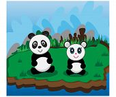 Panda Land Lovely